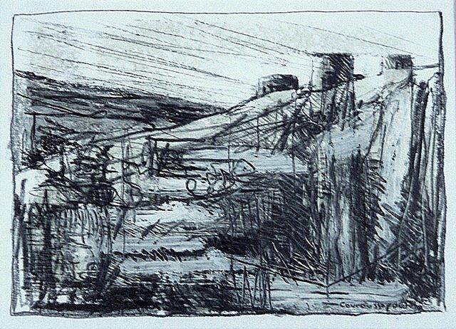 Mylotopos Machou, study